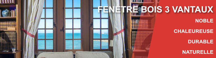 Fenetre BOIS 3 vantaux